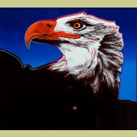 Andy Warhol Bald Eagle