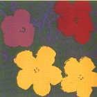Andy Warhol (after) Flowers II.65
