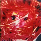 James Rosenquist Gift Wrapped Doll