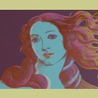Andy Warhol Birth of Venus